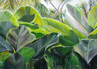 ©Julie Schofield, Shala Leaves, Acrylic on Canvas 45 x 91cm