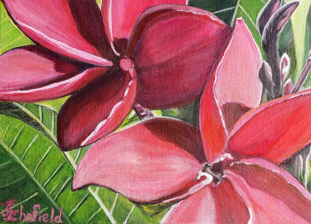 ©Julie Schofield,Red Hot Frangipani, Acrylic, 25 x 35cm