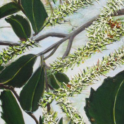 ©Julie Schofield, Breathing Macadamia Flowers, Acrylic on Canvas, 51 x 20.5
