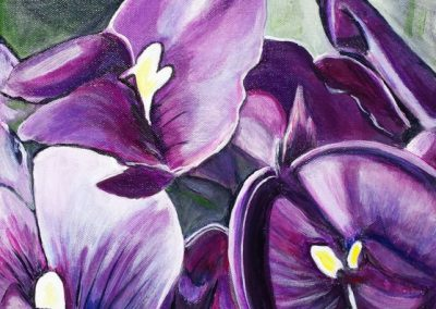 ©Julie Schofield, Hardenbergia, Acrylic on Canvas, 30 x 30cm